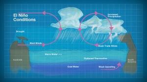 El Nino varlığında gözüken hava olaylarını güzel bir şekilde anlatıyor resim.